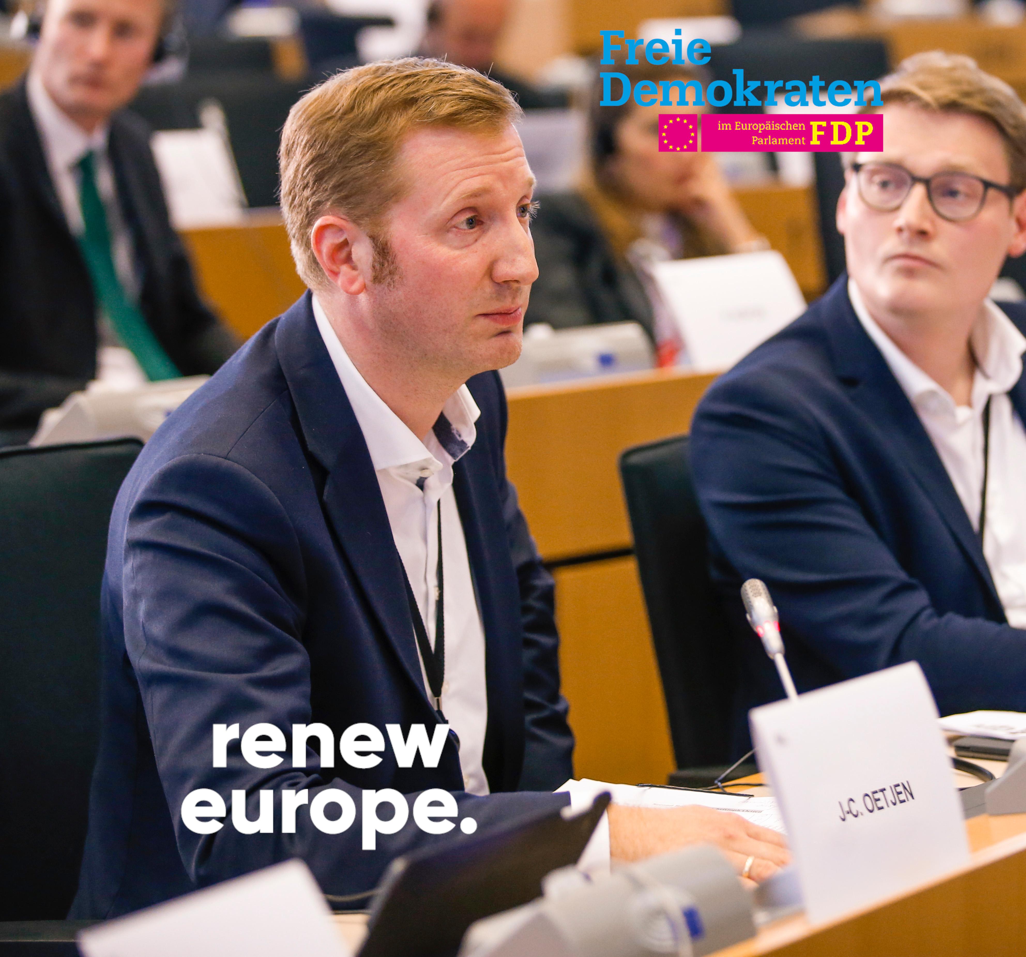 Die Europäische Union als Krisenmanagerin