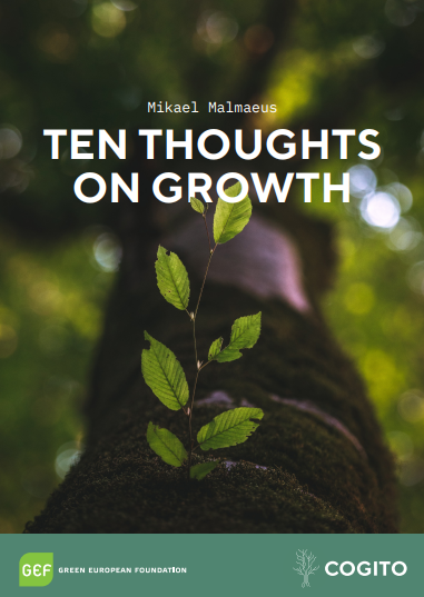 Ten Thoughts on Growth