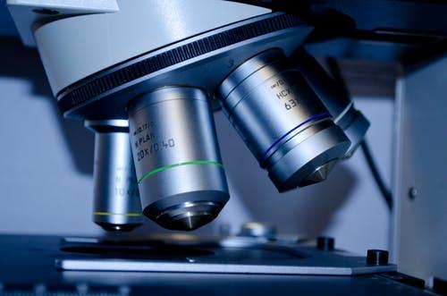 Biology Internship Programmes Internship Programmes