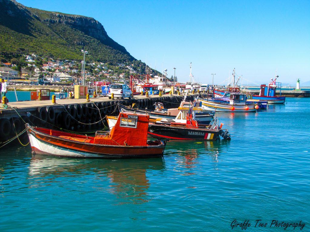 False-bay-harbour-Cape-Town-2