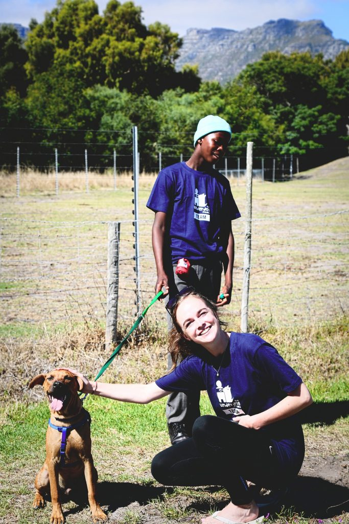 Interning-at-a-rescue-shelter-for-dogs-Bridging-Gaps