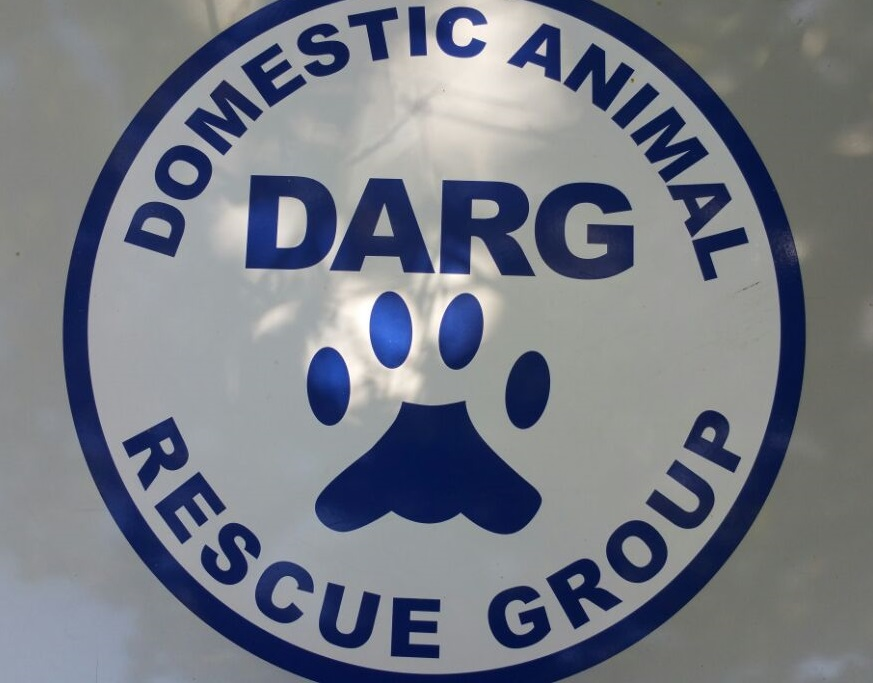 DARG-Domestic-Animal-Rescue-Group