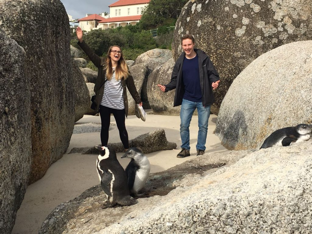 penguins environmental science Internships in cape town