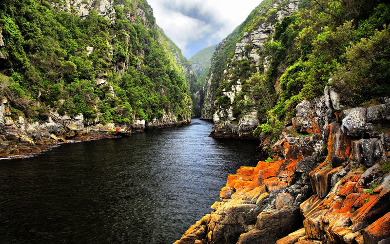 storms river environmental science internships in cape town