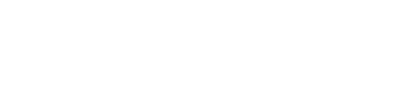 The Joan Hohlt and Roger Wich Foundation