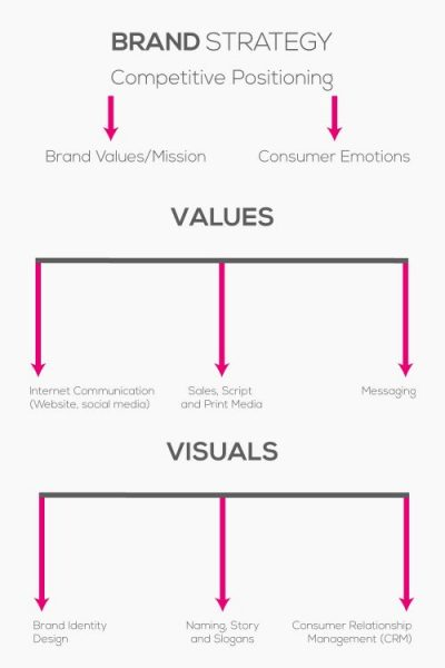 infographic and diagram of brand strategy development and brand positioning and brand building