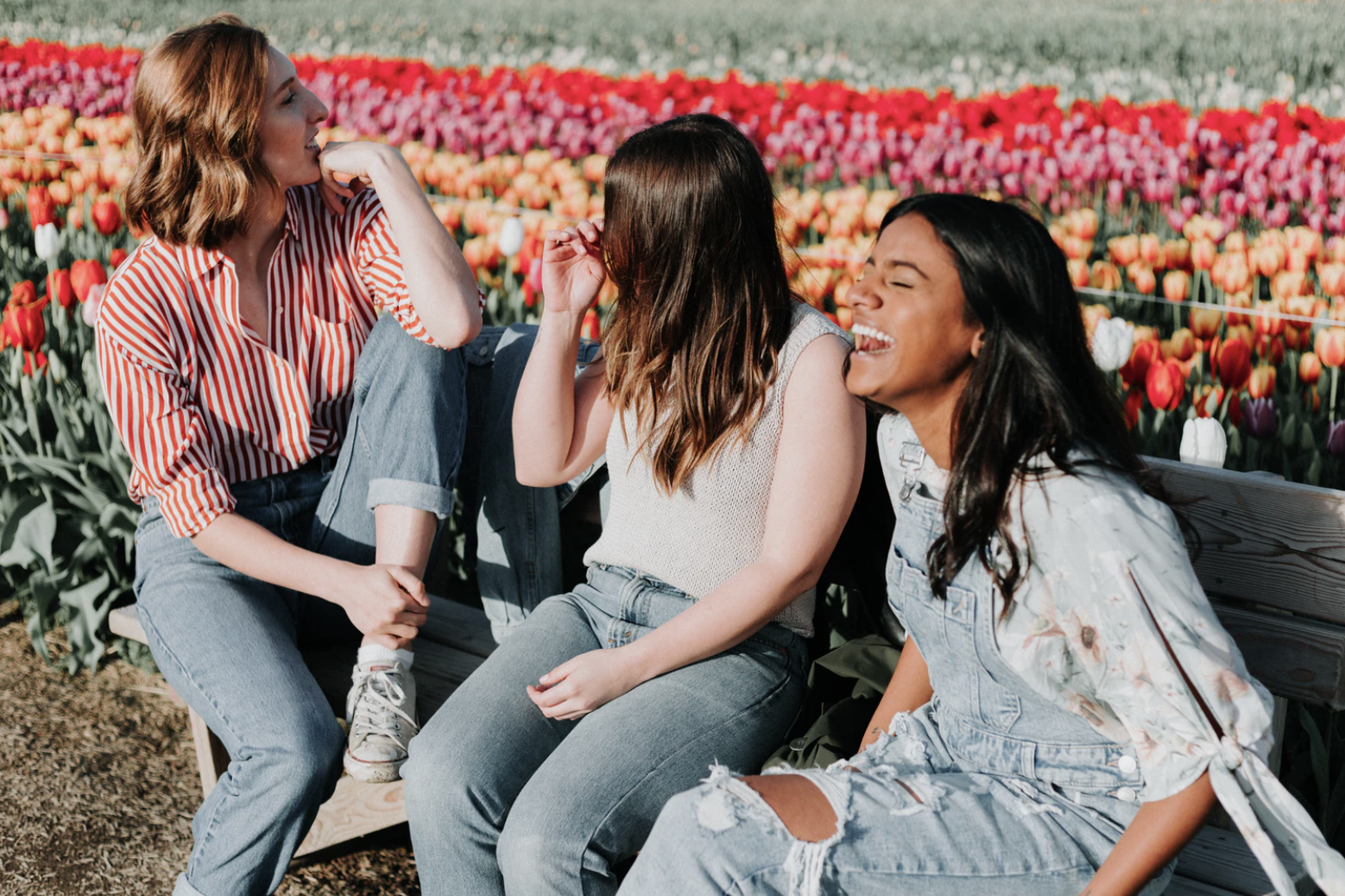 Three female friends relaxing on a bench in front of a tulip field in the Netherlands