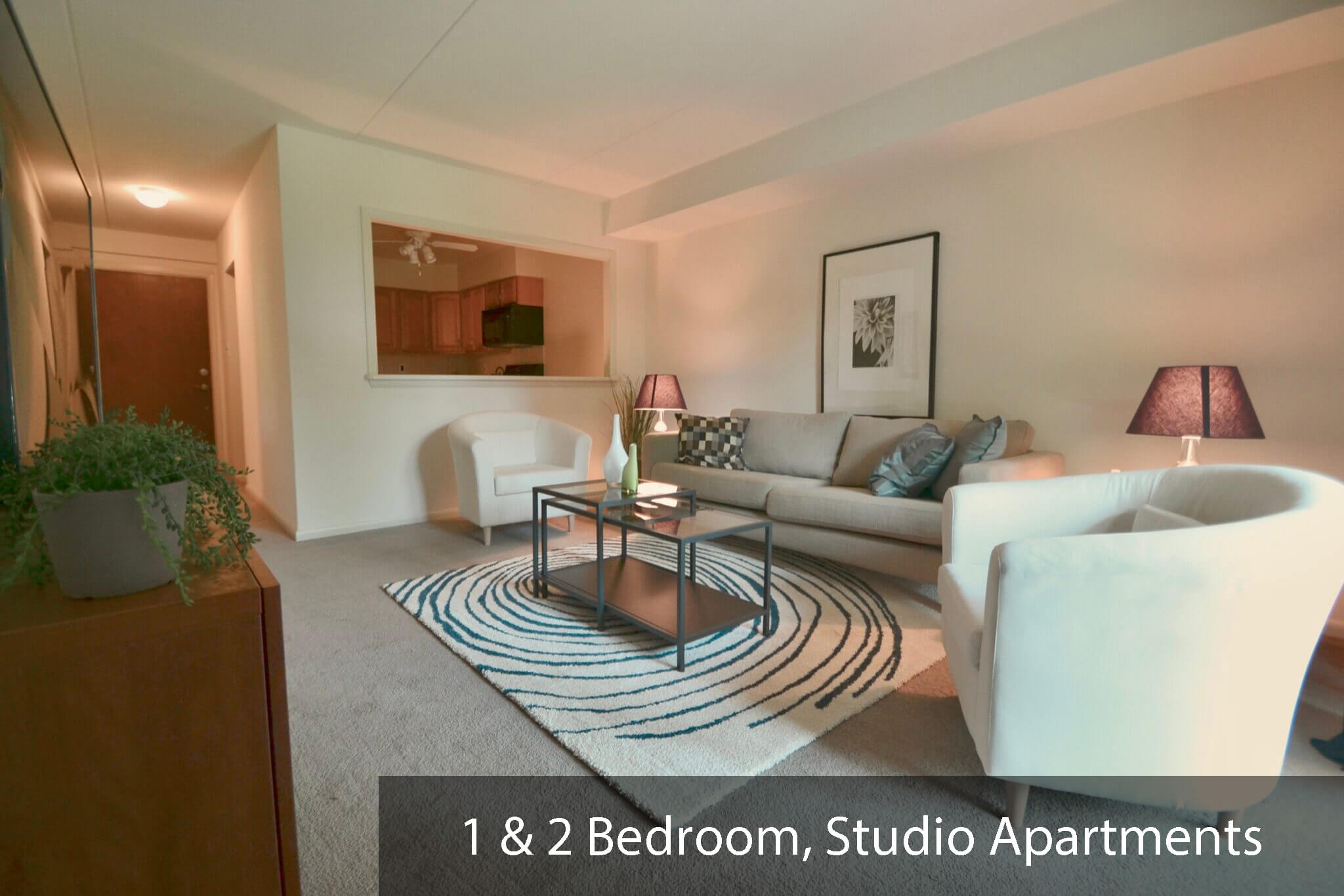 Spacious living area in one bedroom, two bedroom, and studio/efficiency apartments