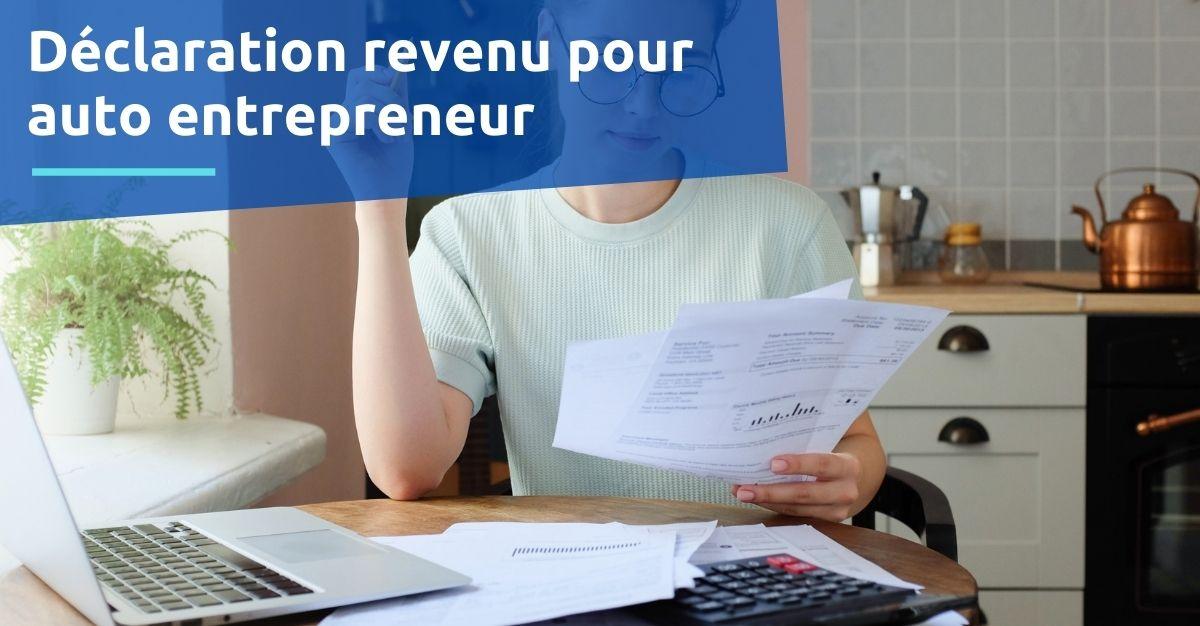 Déclaration revenu auto entrepreneur cerfa  n°2042