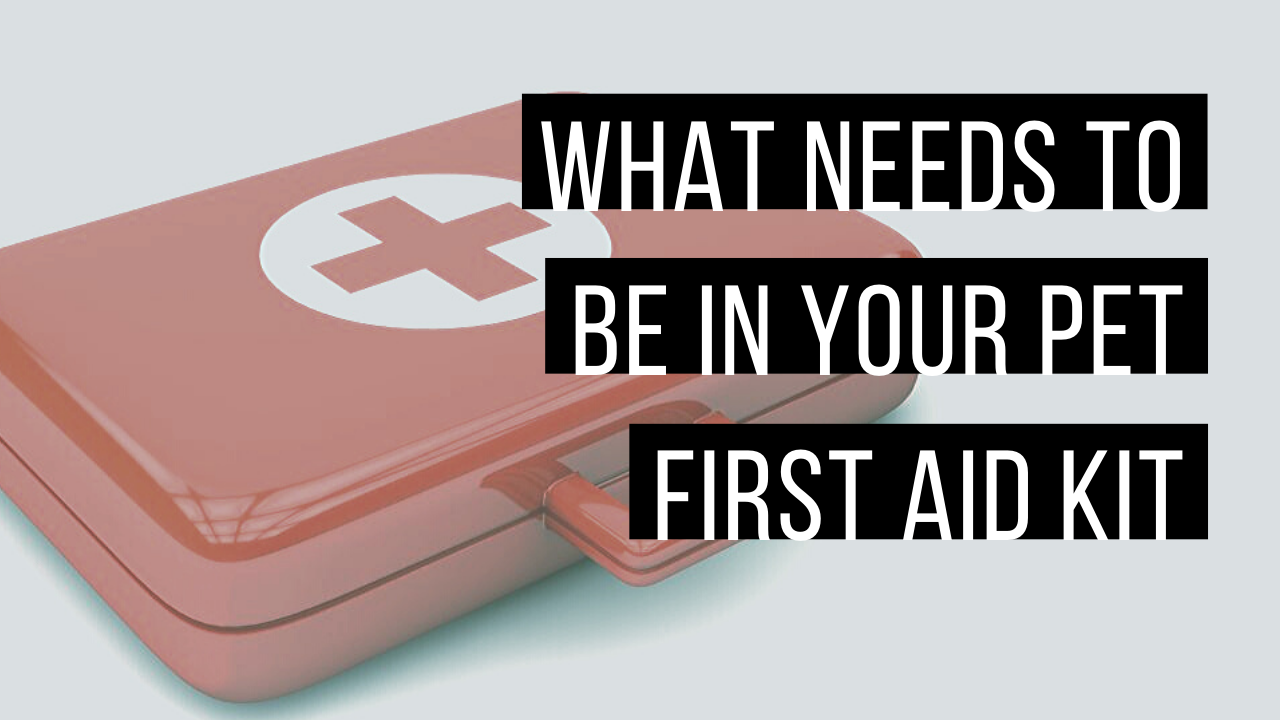 First aid kits for pets