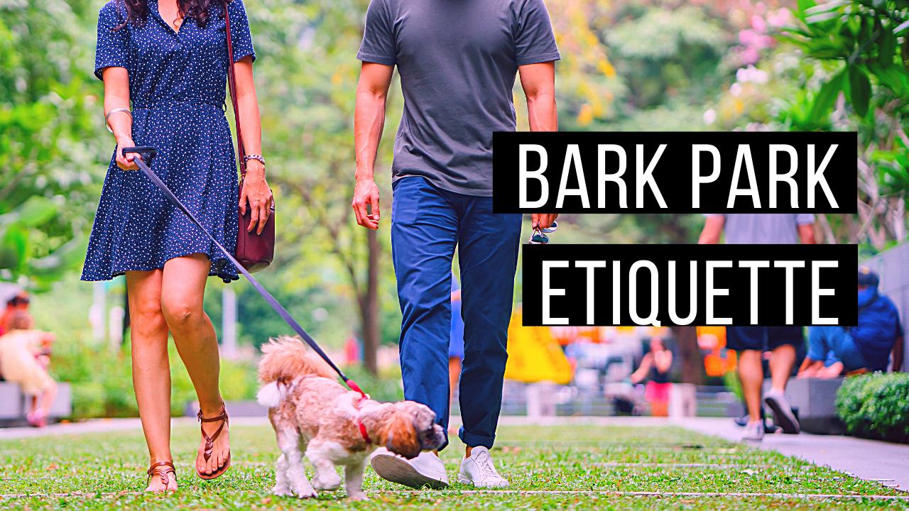Bark park etiquette