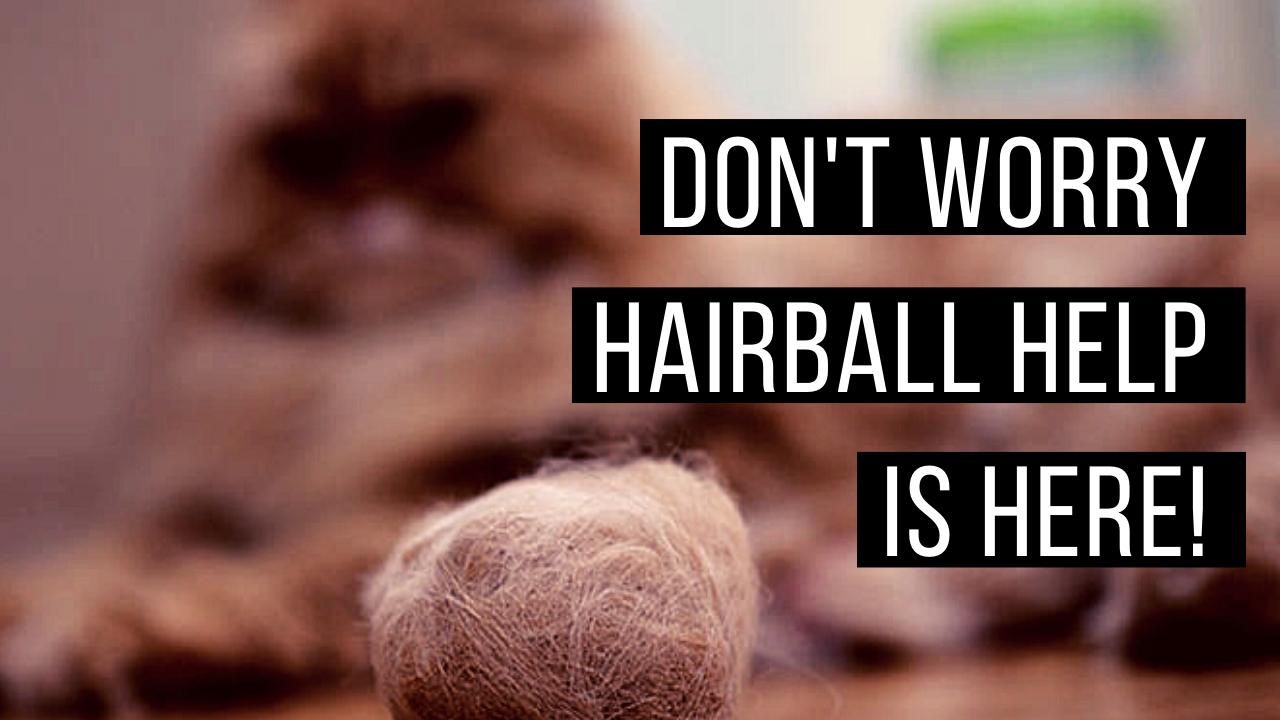 Hairball help!