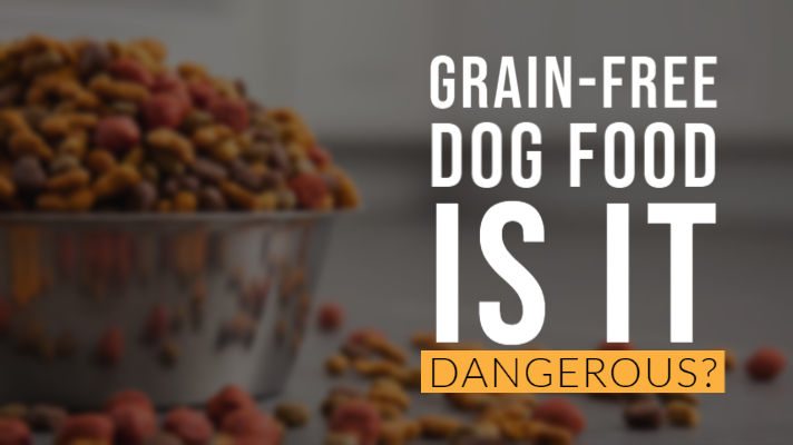 Warning: Grain Free Pet Food Could Be Harming Your Dog!