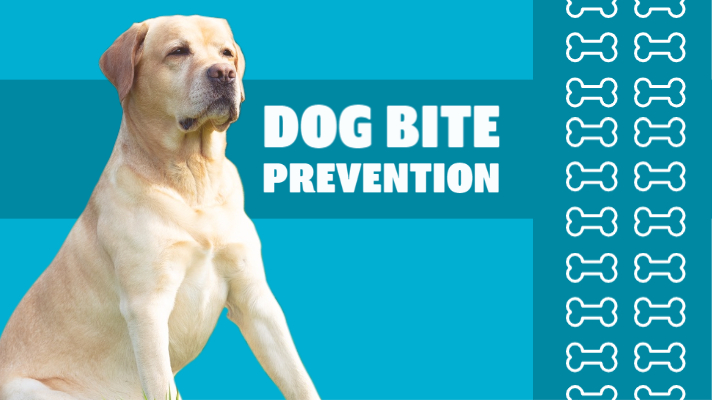 Dog Bite Prevention Week - How to spot it and how to stop