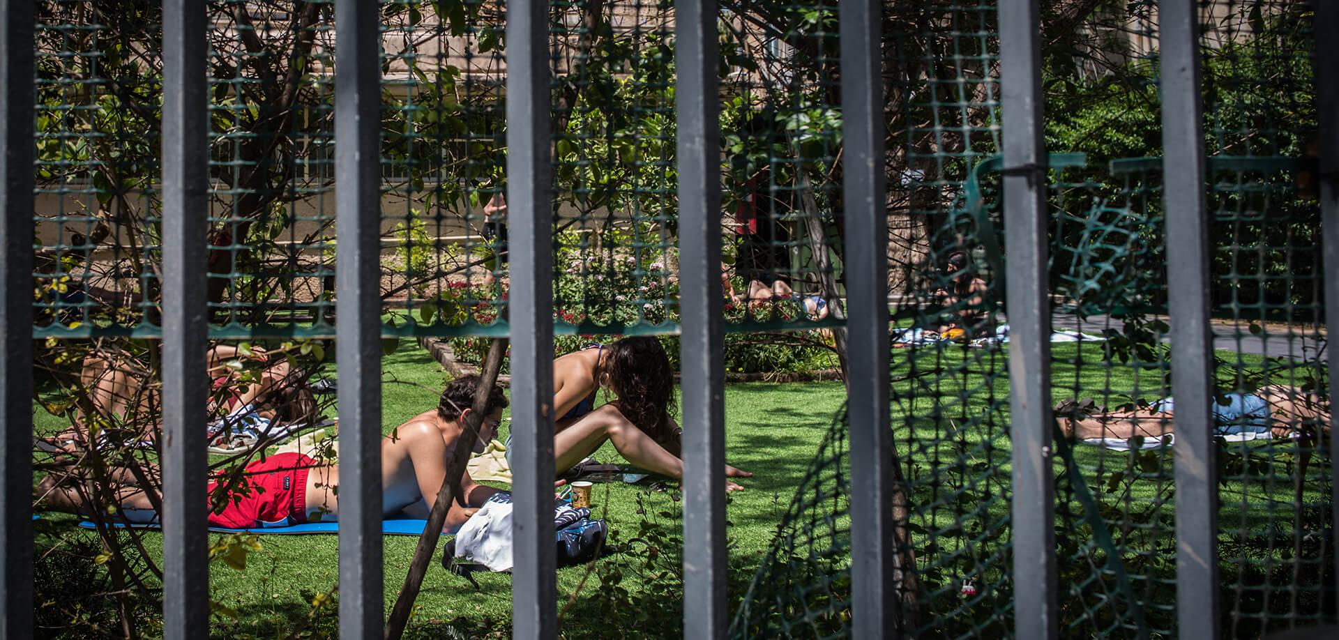 משתזפים בגינה בתל אביב. כמה אפשר להיות בבית? צילומים: ביאה בר קלוש