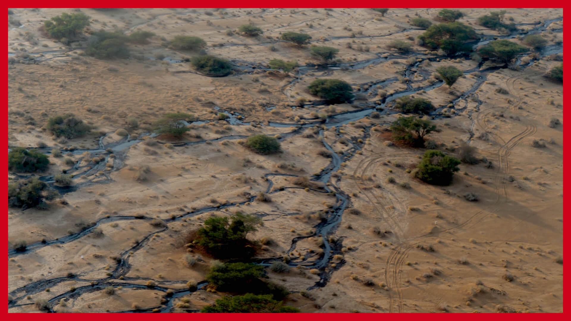 """האסון הסביבתי הכבד בשמורת עברונה ב-2014 כתוצאה מצינור נפט שהתפוצץ. צילום: עמוס בן גרשום - לע""""מ"""