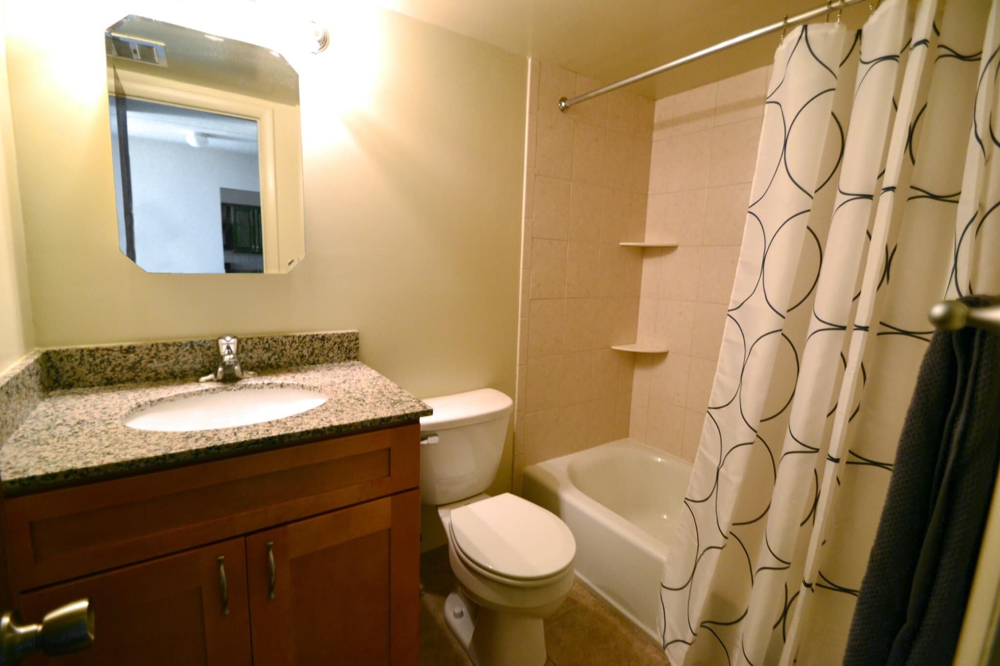 1 Bedroom Apartment Bathroom