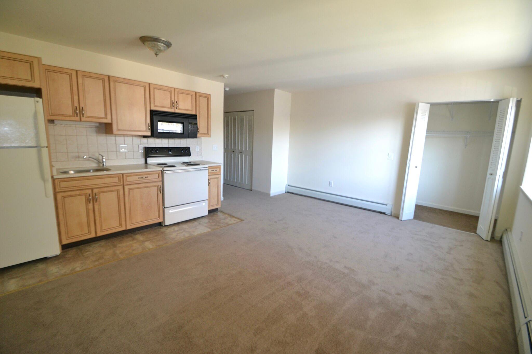 Studio/Efficiency Apartment Living Area