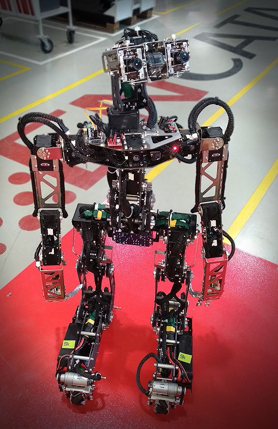 Skeleton robots