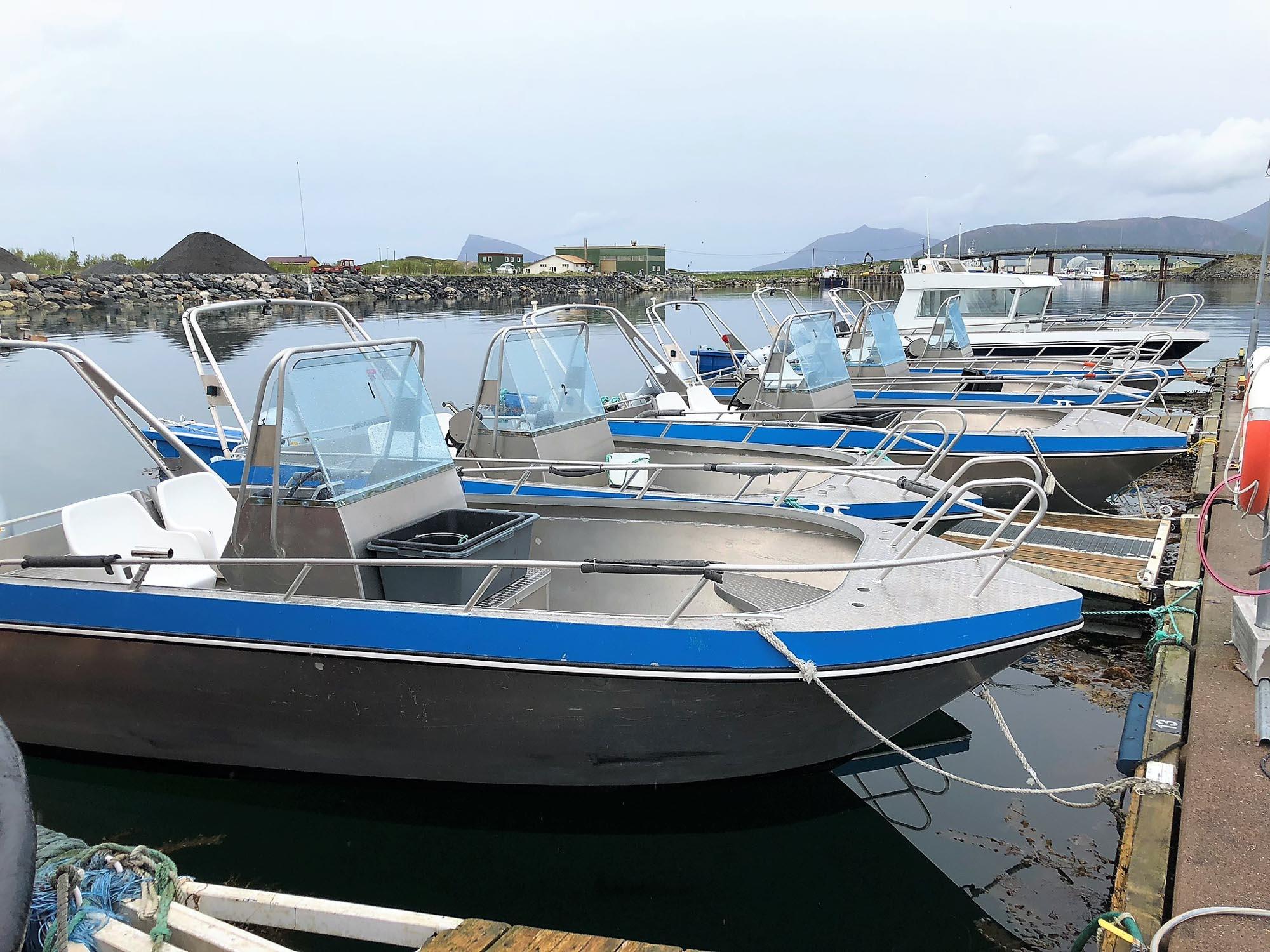 Blå og hvite båter på en snor