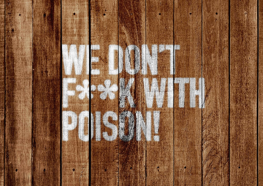 Stone Cold Alcohol Free Brewery - Messaging Spray Painted on Wood