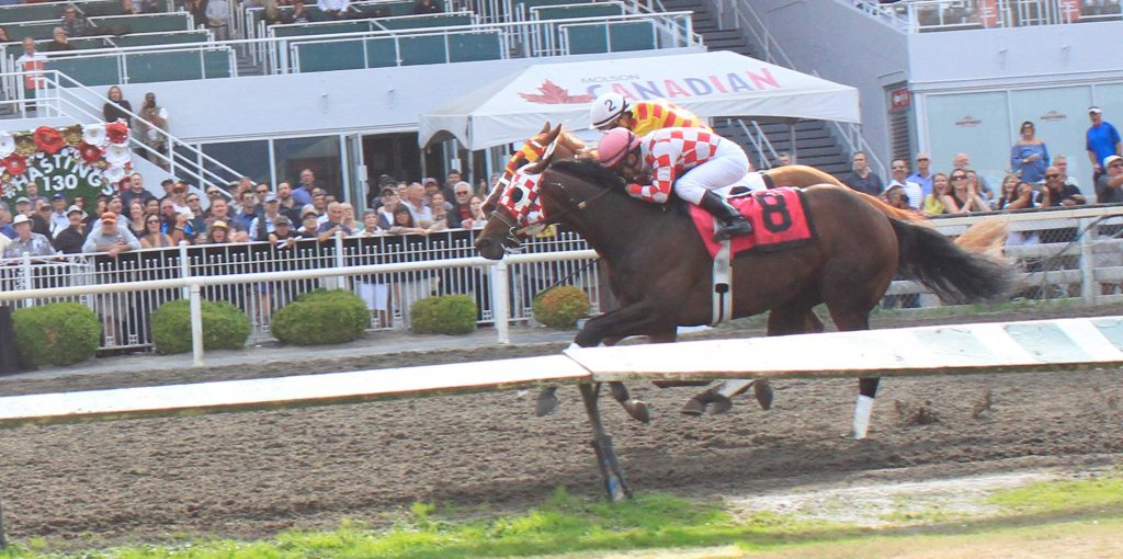 Five Star General winning the BC Derby