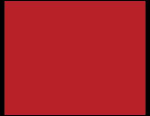 NATHC checkered silks
