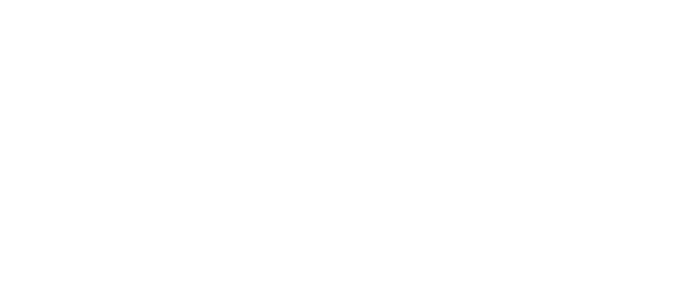 mma manager logotype in white