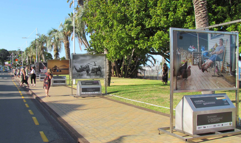 The public in Tauranga CBD enjoying the exhibition