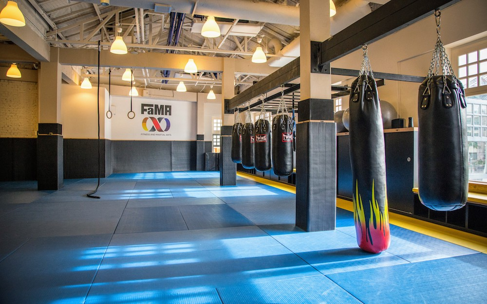 FaMA - Fitness and Martial Arts