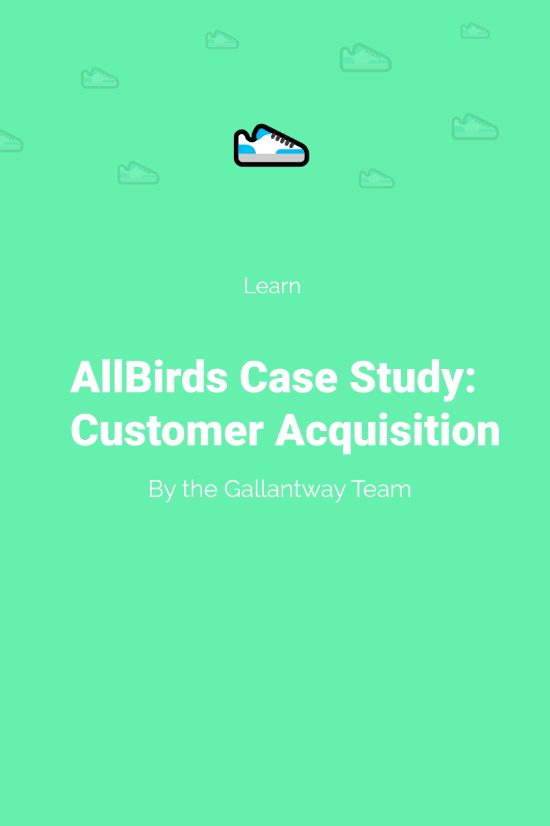 allbirds ecommerce case study