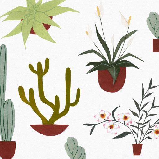 Fall Plant Sale