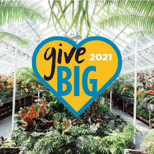 GiveBig 2021