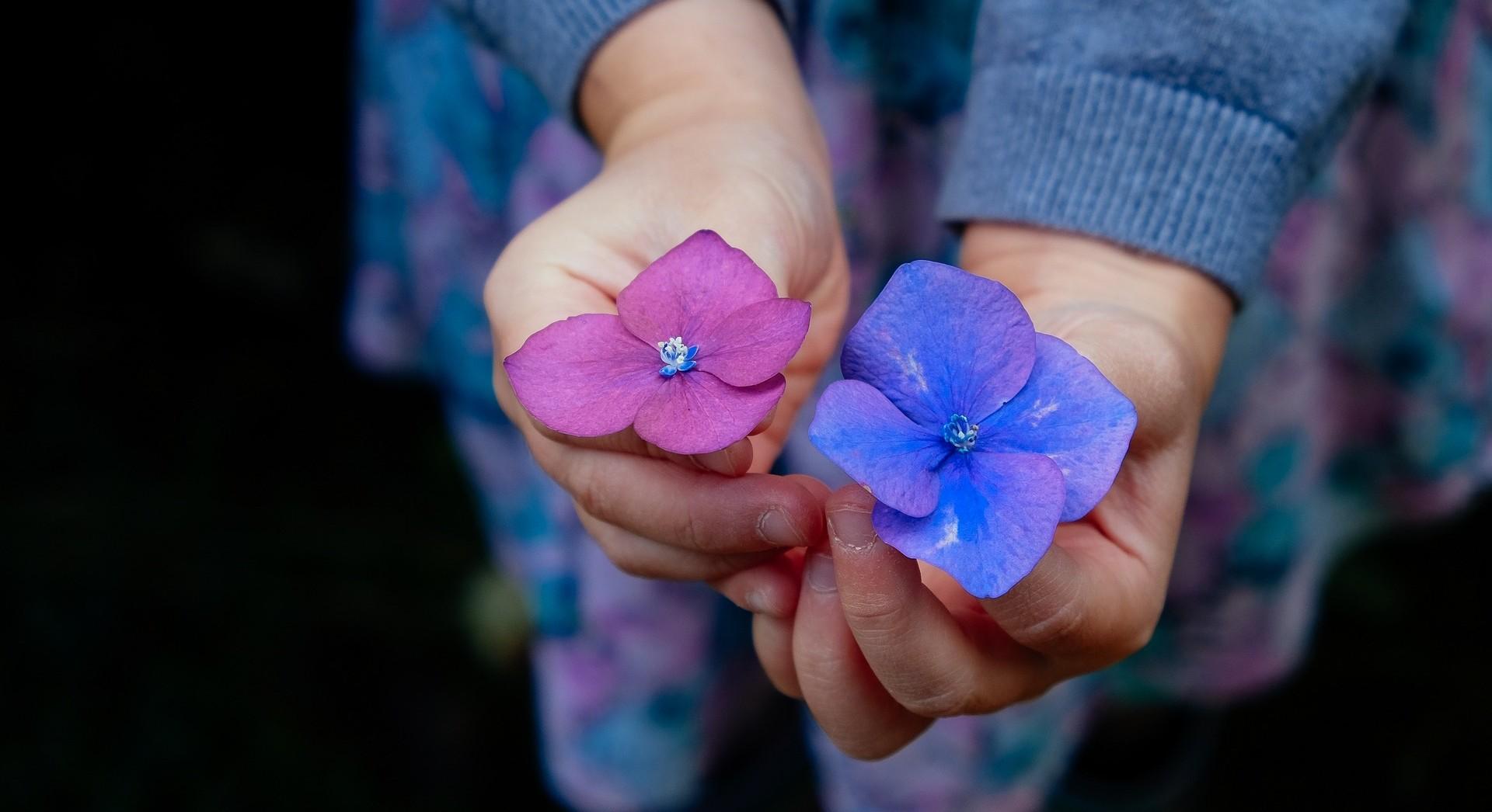 Lisa Hirsch's Caregiving Story