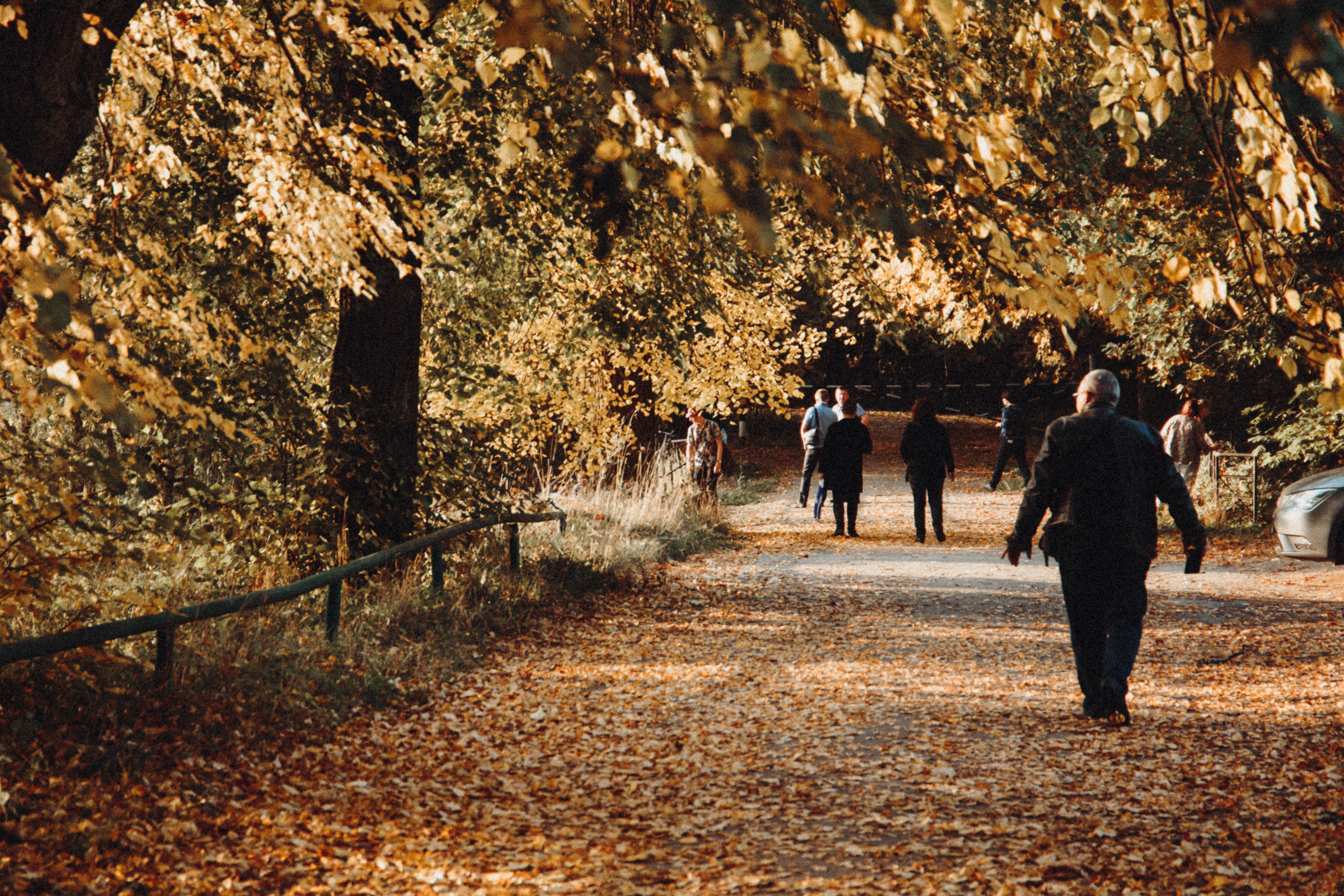 7 Ways to Prevent Unsafe Wandering