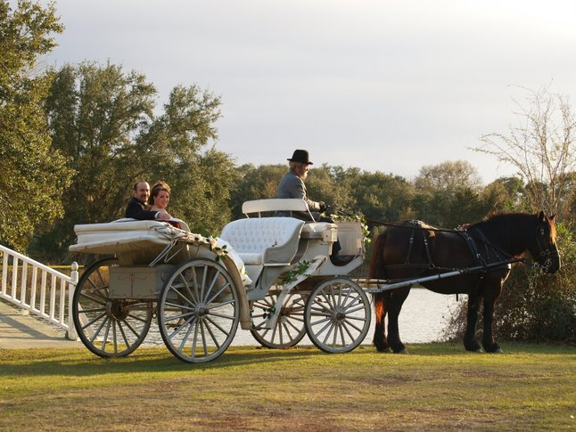 A couple riding in a horse drawn carriage
