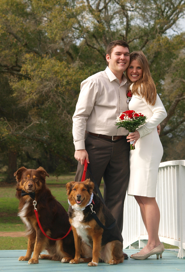 Bride and groom with their two dogs