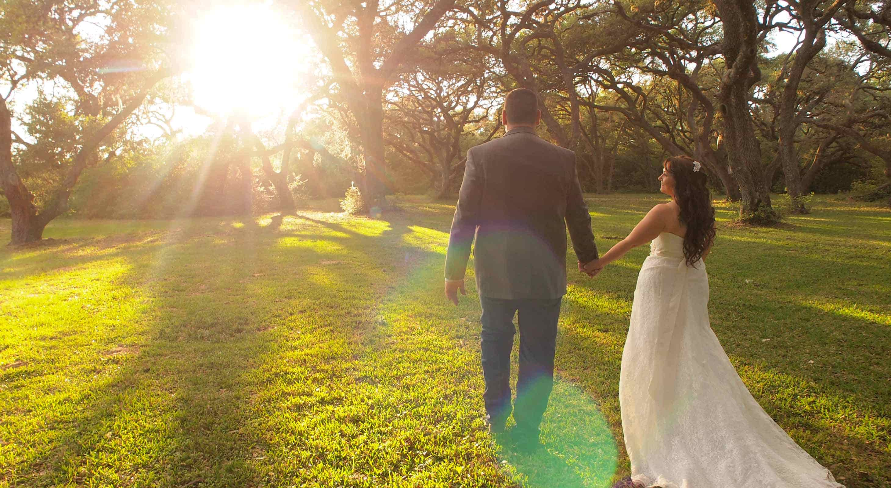 A couple walking hand in hand towards a grove of sunlit oaks