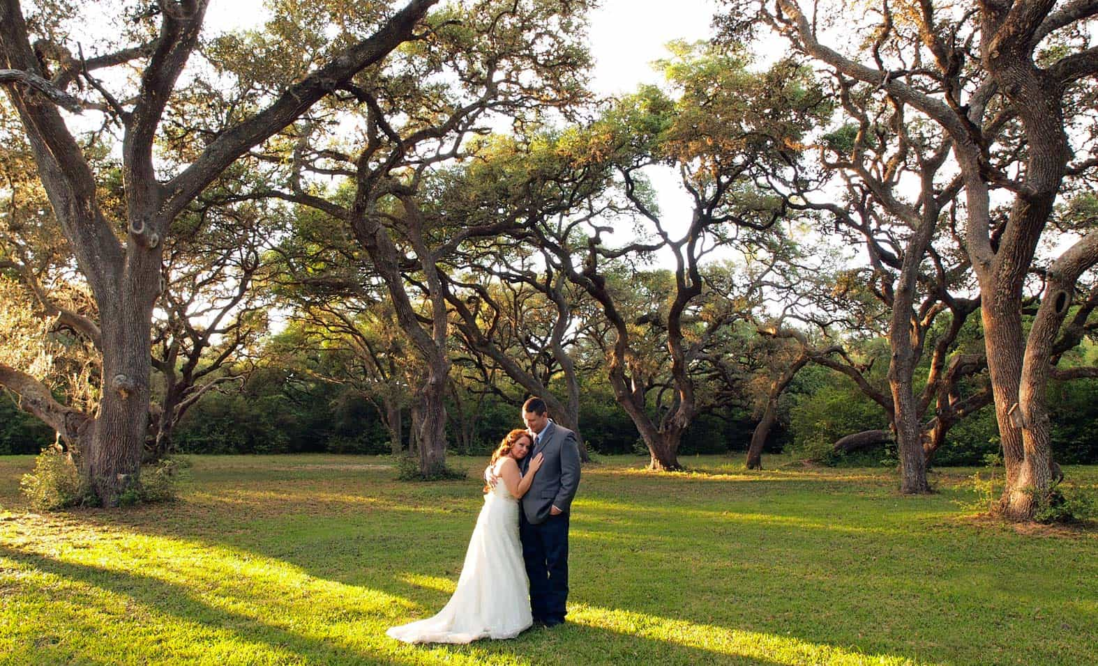A wedding couple standing under a grove of large oaks