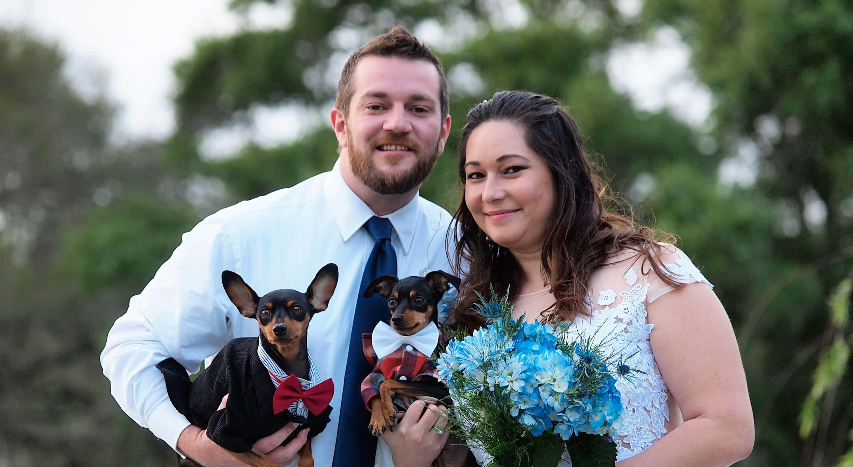 Bride and groom holding little dogs