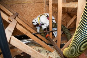 insulation_removal (1)