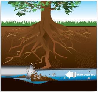 sewer-pipe-repair-replacement-st-louis