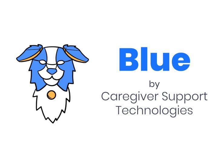 Caregiver Support Technologies
