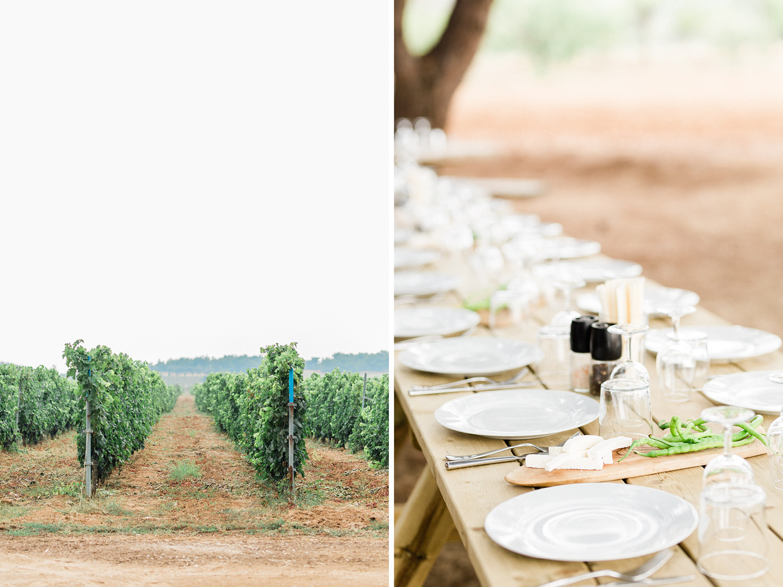 Mediterranean Vineyard Wedding