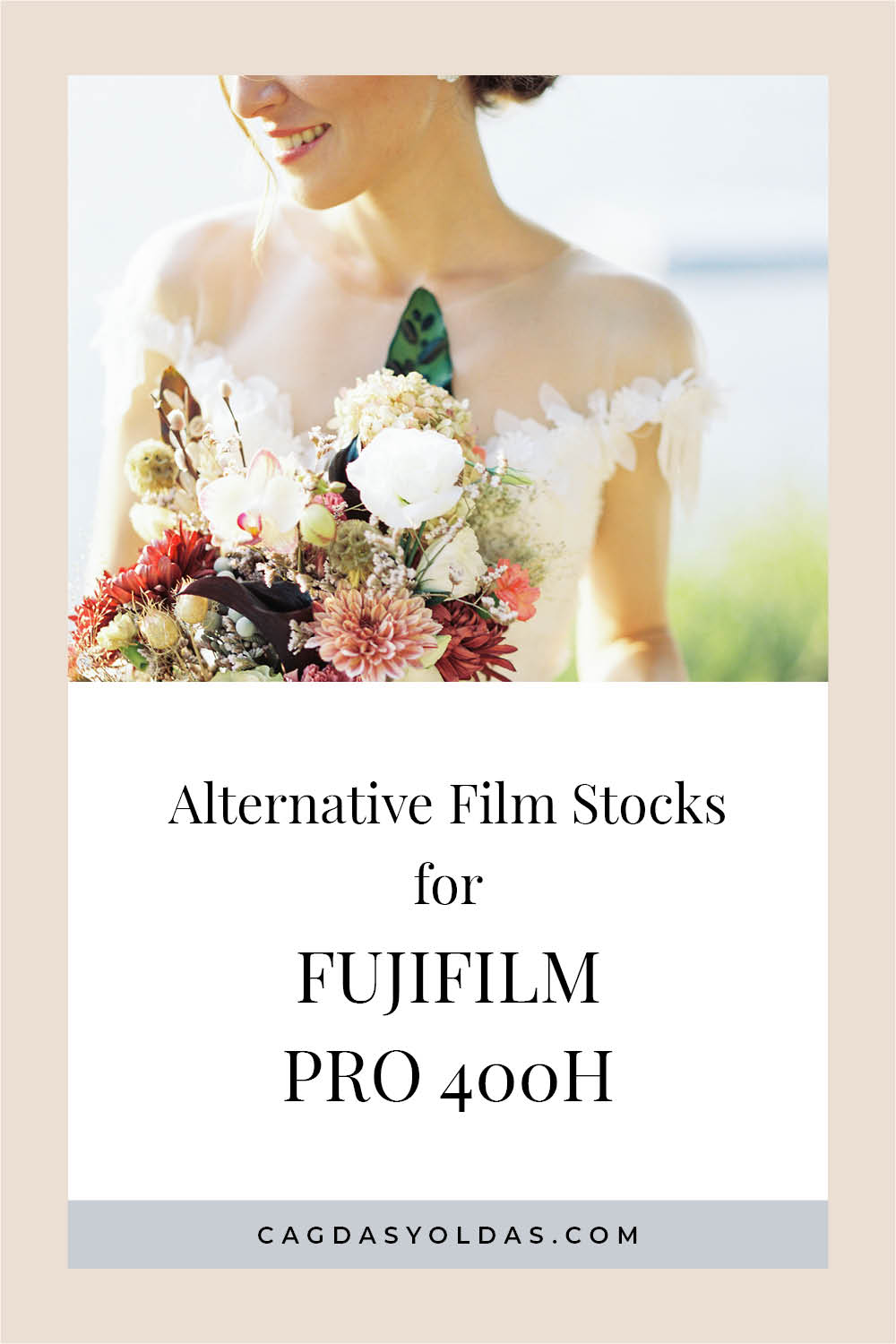 Alternative Film Stocks for Fujifilm PRO 400H