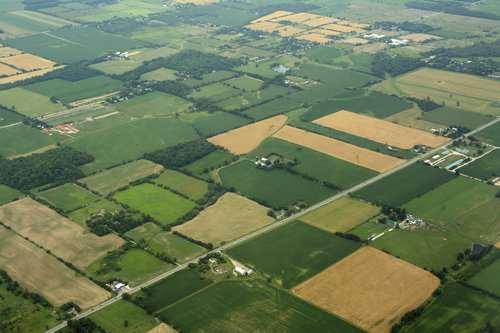 Imagen aerea de campos con pasturas y cultivos