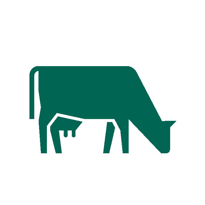 Icono de una vaca verde