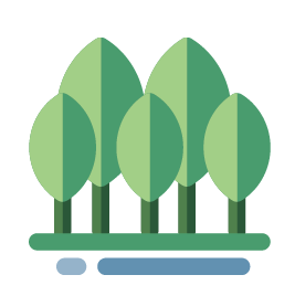 duurzaam bos met bomen