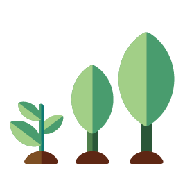 3 nieuwe bomen die groeien in duurzame bossen
