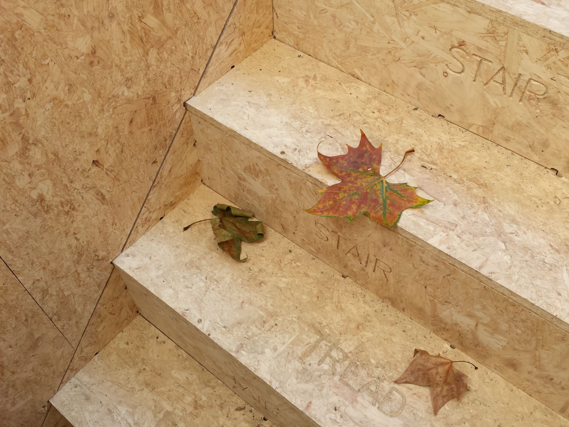 A close-up view of an off-site manufactured staircase with autumn leaves.